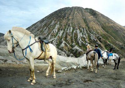 Bromo volcano, Indonesia.