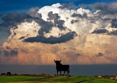 Toro y tormenta / Storm and bull ad, Spain.