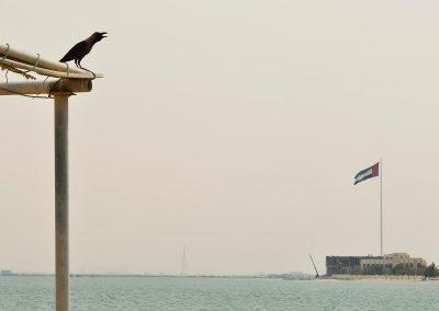 United Arab Emirates.