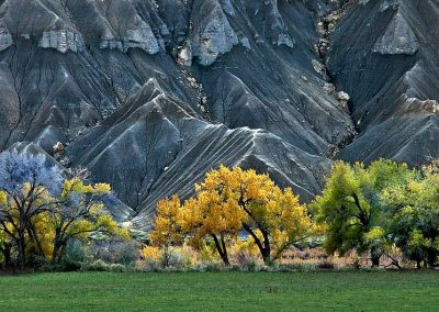 Paisaje otoñal / Autumn landscape, Utah, USA.