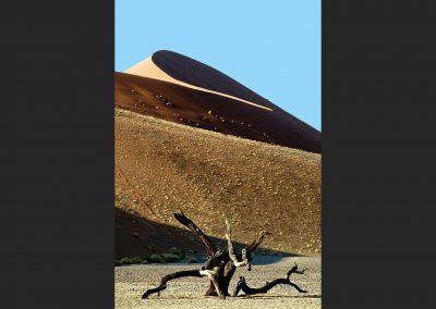 Dune 45, Namib desert, Namibia.