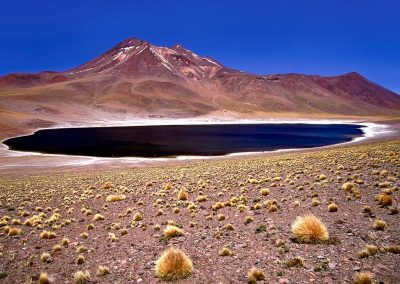 Lago en el altiplano / lake in the plateau, Bolivia.