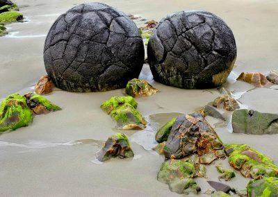 Rocas esfericas de Moeraki, New Zealand