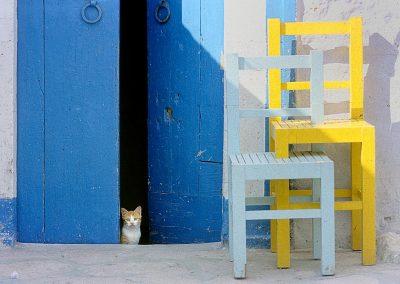 Gato / cat, Village in Tunez