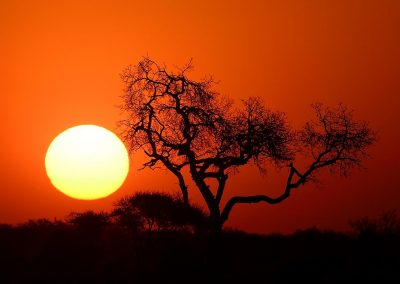 Atardecer, Sunset. South Africa.