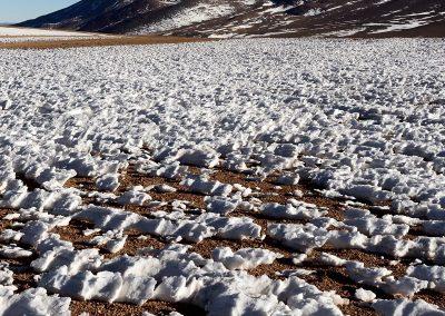 Altiplano boliviano.