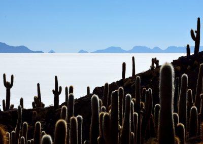 Isla Incahuasi, Salar de Uyuni, Bolivia.